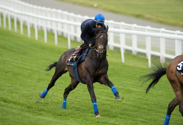 Jack Hobbs (William Buick)
