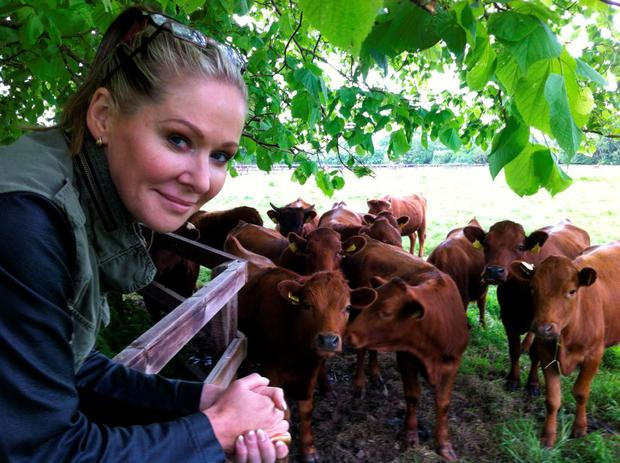 Going native: Eavaun Carmody with some of her dexter cattle at Killenure Castle in Dundrum, Co Tipperary