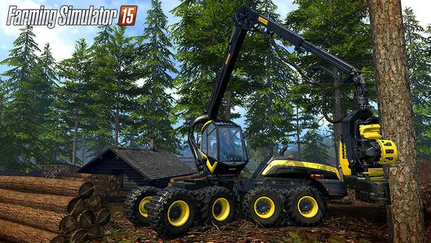 Forestry is one of the new options