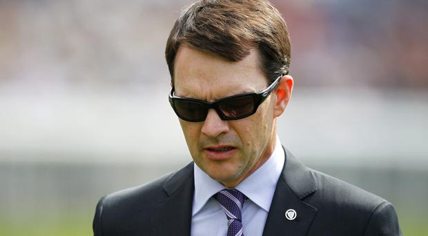 Aidan O'Brien's promising Words will be among the entries at the Munster Oaks tomorrow