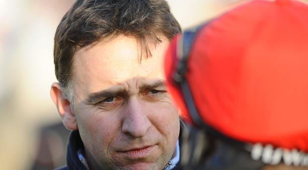Henry de Bromhead's five-year-old Exxaro lost out at Clonmel
