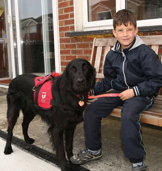 Luke Gilligan with his guide dog