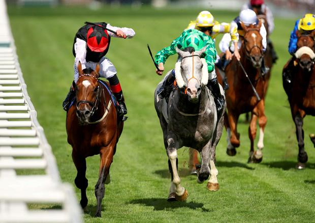 Free Eagle ridden by jockey Pat Smullen (left) comes home to win the Prince Of Wales's Stakes ahead of The Grey Gatsby