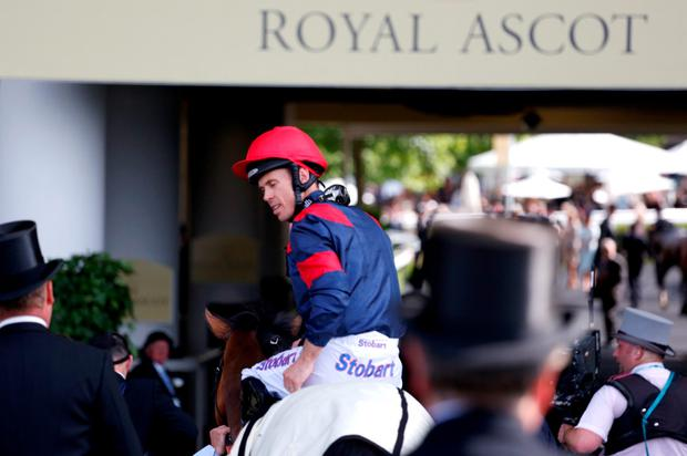 Trip To Paris ridden by Graham Lee after victory in the Gold Cup