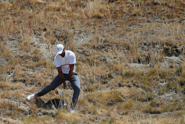 Tiger Woods hits out of the tall fescue grass on the eighth hole at Chambers Bay yesterday