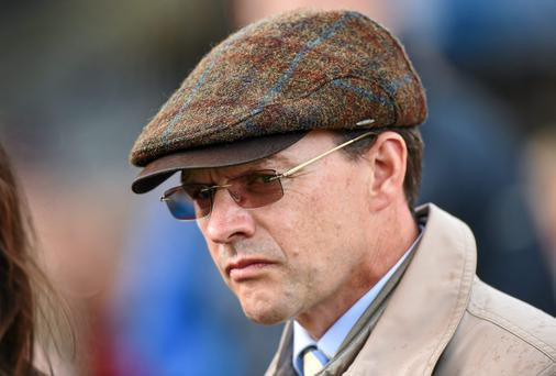 Aidan O'Brien's Rosshaven Lady is preferred in the bumper