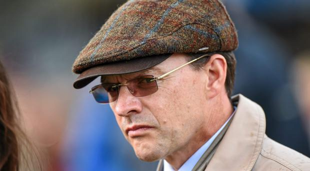 Dermot Weld and Aidan O'Brien (pictured) will vie to add to their fantastic international exploits in different Grade One events at Belmont Park tomorrow night.
