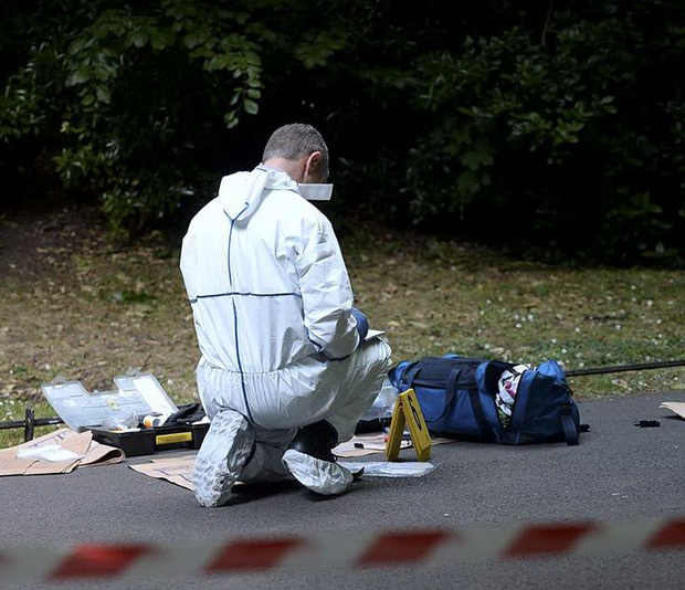 A garda forensics expert in St Stephen's Green where local hero Pat Flynn saved a woman from a sexual assault.