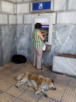 A dog sleeps as a woman withdraws money from an ATM in Athens, Greece REUTERS/Marko Djurica