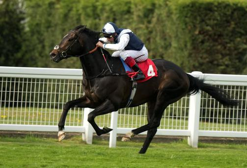Jack Hobbs, seen here winning at Sandown under Frankie Dettori, is taken to justify his position at the head of the market in today's Dubai Duty Free Irish Derby