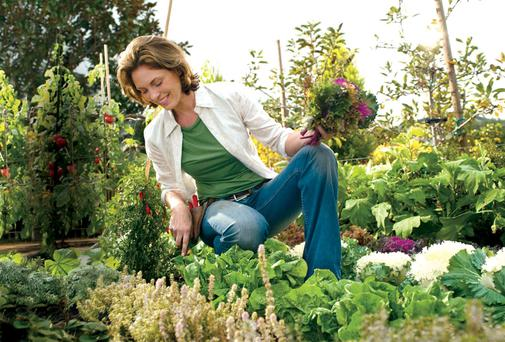 If you're seriously considering an early retirement, you'll need to be good in the garden — but even better with your investment strategy