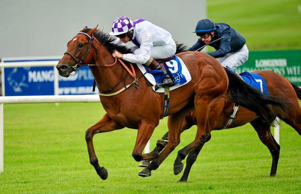 28 June 2015; Sanus Per Aquam with Kevin Manning up, ahead of Lieutenant General with Donnacha O'Brien up, on their way to winning the Barronstown Stud E.B.F. (C & G) Maiden. Curragh Derby Festival. The Curragh, Co. Kildare. Picture credit: Cody Glenn / SPORTSFILE