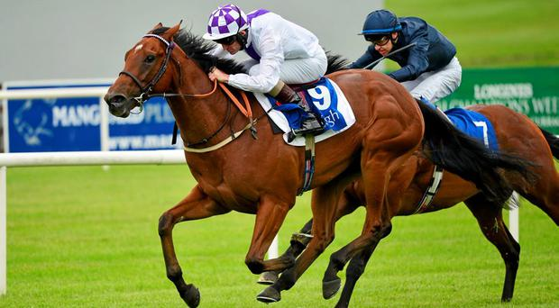 Sanus Per Aquam with Kevin Manning up, ahead of Lieutenant General with Donnacha O'Brien up, on their way to winning the Barronstown Stud E.B.F. (C & G) Maiden. Curragh Derby Festival. The Curragh, Co. Kildare. Picture credit: Cody Glenn / SPORTSFILE