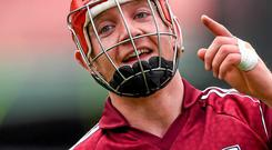 Resentful fans determined to spoil fun for everyone as there was a rush to diminish the greatness of Joe Canning's wonder goal against Kilkenny