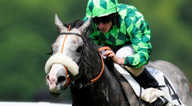 Ryan Moore riding The Grey Gatsby at Chantilly last month