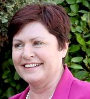 Ann Phelan: 'Social enterprise epitomises the 'bottom up' approach in every sense and the potential in terms of job creation measures is incredibly important'