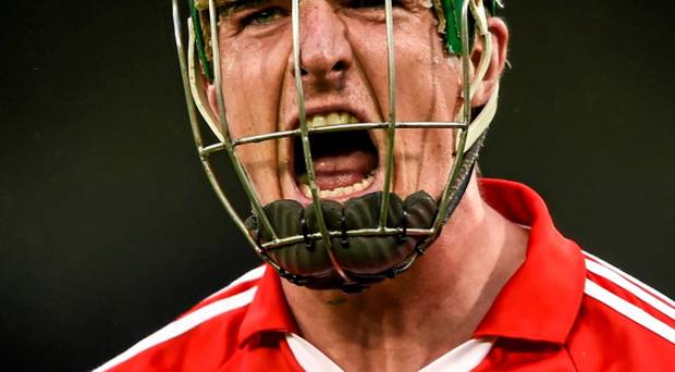 Aidan Walsh celebrates a late point for Cork