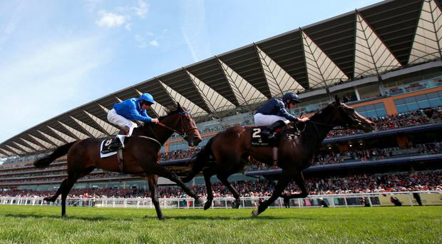 Curvy in action - on his way to winning the Ribblesdale Stakes on day three of the 2015 Royal Ascot Meeting at Ascot Racecourse