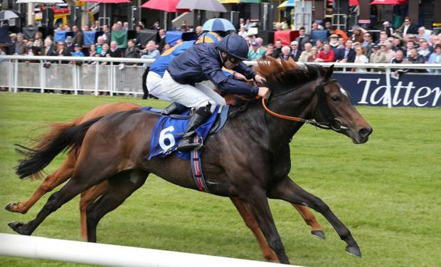 Curvy with Wayne Lordan up winning the Curragh in May