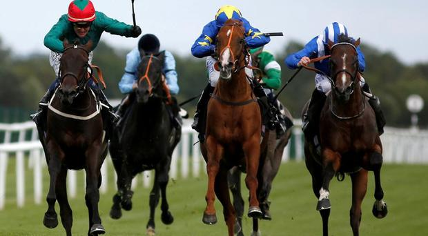Paul Hanagan gets Tasleet (right) up to win The Rose Bowl Stakes at Newbury yesterday