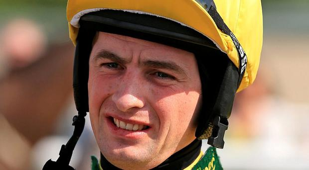 Brian Toomey happy he's made a comeback to horse racing