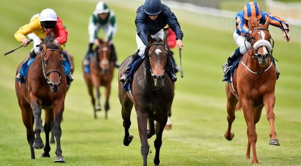 Curvy, pictured here winning the Airlie Stud Gallinule Stakes ahead of Giovanni and Prince Gagarin, can achieve another success under Wayne Lordan at The Curragh this evening