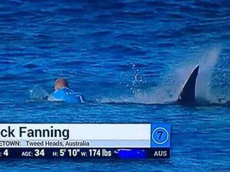 Fanning managed to fight off the shark until a boat came to rescue him.