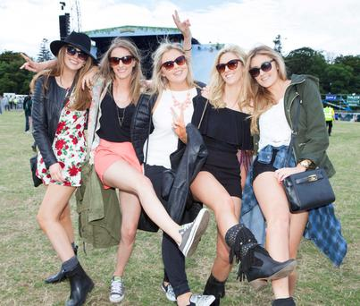 Revelers at Longitude 2015 in Marley Park. Picture: Tony Kinlan.