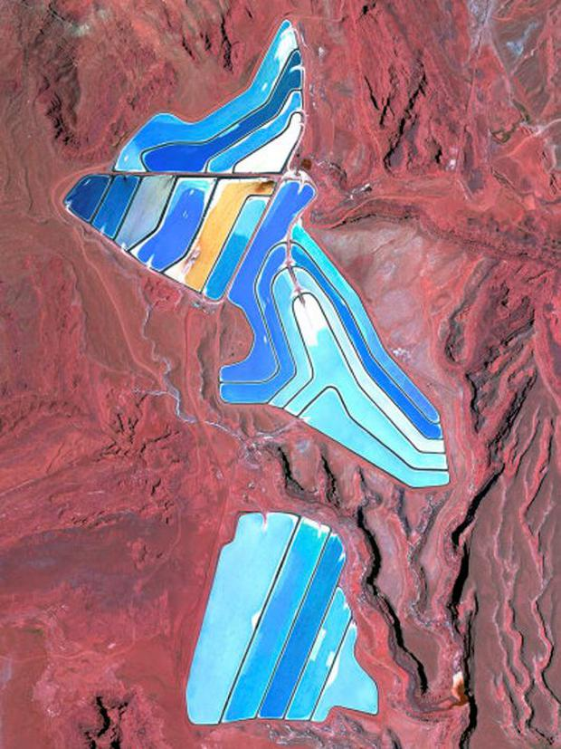 Moab Potash Ponds: The Intrepid Potash Mine in Moab, Utah, USA produces muriate of potash, a potassium-containing salt used widely by farmers in fertilizer. The salt is pumped to the surface from underground deposits and dried in massive solar ponds that vibrantly extend across the landscape. As the water evaporates over the course of 300 days, the salts crystallize out. The water is dyed bright blue to reduce the amount of time it takes for the potash to crystallise; darker water absorbs more sunlight and heat Picture: DigitalGlobe/REX Shutterstock