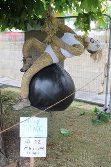 Is that you Miley? 'Miley Silage' won first place in last year's Most Humorous award
