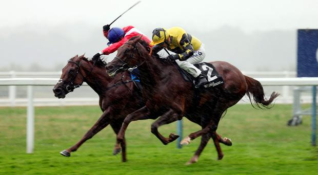 Evita Peron, ridden by Richard Kingscote (No 2), gets up to beat Solar Magic (William Buick) in the Valiant Stakes at Ascot