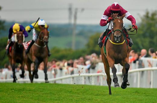 30 July 2014; Road to Riches, with Shane Shortall up, races clear of the field on their way to winning thetote.com Galway Plate. Galway Racing Festival, Ballybrit, Co. Galway. Picture credit: Barry Cregg / SPORTSFILE