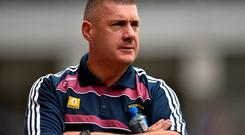 Westmeath manager Tom Cribbin