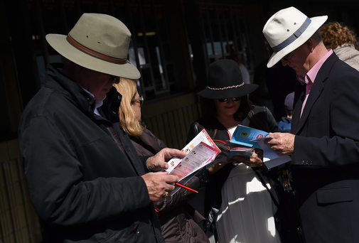Punters study their race cards early in the day at Galway Racing Festival, Ballybrit, Galway.
