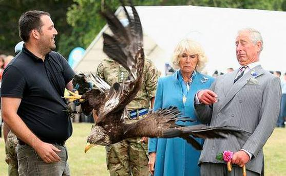 Prince Charles reacts to a bald eagle