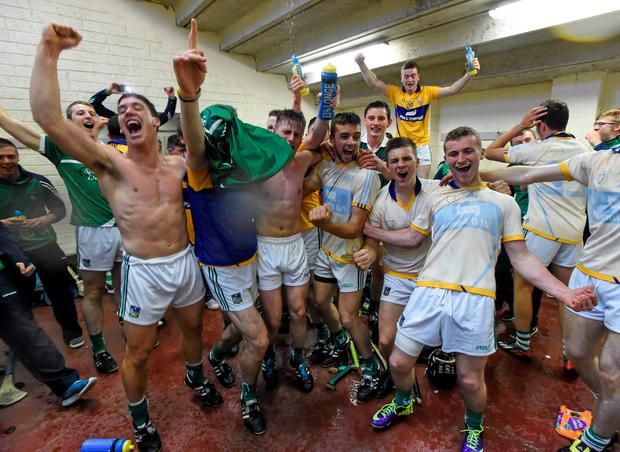 Limerick players celebrate following their victory