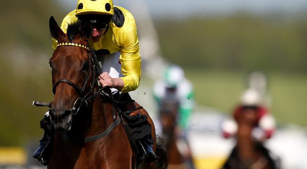 For Lady Of Dubai to triumph she must defeat two Classic winners, Legatissimo, which landed the 1,000 Guineas, and the French Oaks winner Star Of Seville as well as the recent Irish Pretty Polly winner Diamondsandrubies