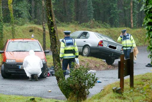 HORRIFIC ATTACK: Cratloe Woods in Limerick, where former Oberstown inmate Thomas O'Neill took part in a gang rape