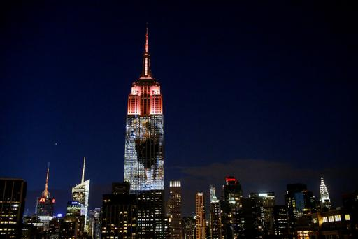 An image of Cecil the lion is projected onto the Empire State Building as part of an endangered species projection to raise awareness, in New York August 1, 2015. REUTERS/Eduardo Munoz