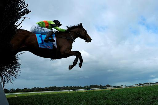 Bashboy – seen here winning in Melbourne last year – will be partnered by Ruby Walsh for the Australian Grand National