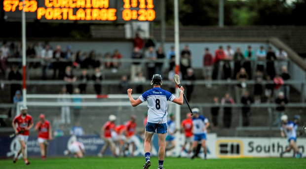 Waterford's Austin Gleeson celebrates after his side scored their first goal in the Munster quarter final against Cork