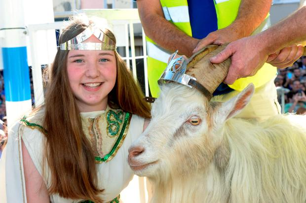 Queen of the Puck Fair Ciara O'Brien crowns a wild mountain goat as King Puck in the square in Killorglin, Co Kerry, yesterday. Photo: Don Mac Monagle