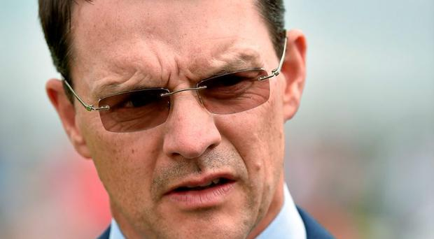 O'Brien: Set to divert Gleneagles to York
