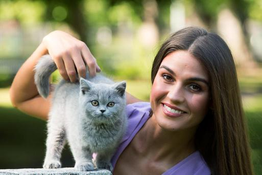 Model and cat lover Lynn Kelly was joined by feline friends today to help Whiskas reveal some interesting findings about Ireland's cat lovers.