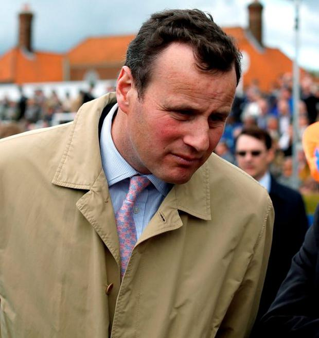 Trainer David Wachman is tipped to deliver the nap vote with Marie Celeste at Tramore's August festival