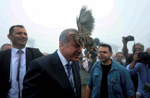 Turkish President Recep Tayyip Erdogan releases a bird during an opening ceremony for a new mosque in the Black Sea town of Rize, Turkey. (AP Photo/Ugur Can/ Dogan News Agency)