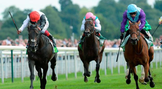 Golden Horn (left) loses out to Arabian Queen (right) under Silvestre de Sousa in the Juddmonte International at York