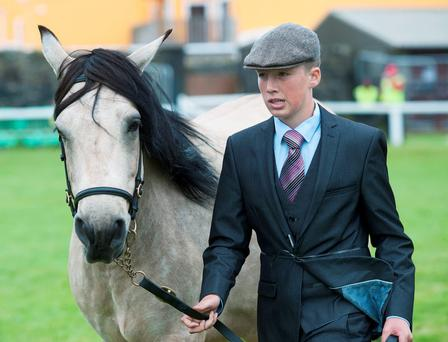 Patrick Keaney with Clonroe Gerry at the Connemara Pony Show in Clifden, Co Galway Photo: Andrew Downes