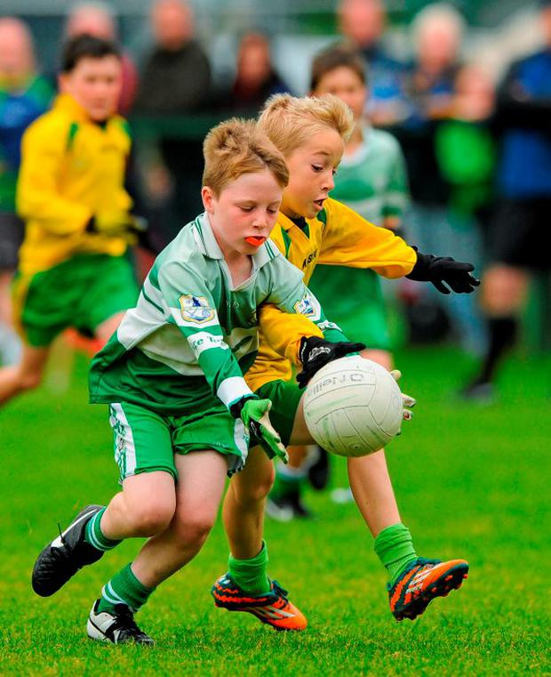 23 August 2015; Action from the Boys U10 & O7 Gaelic Football between Ballinamore, Co. Leitrim and Shannon, Co. Clare. HSE National Community Games Festival, Weekend 2. Athlone IT, Athlone, Co. Westmeath. Picture credit: Seb Daly / SPORTSFILE