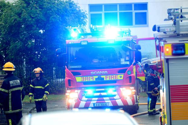 The scene of the fire in Geraldstown Woods Santry. Pic: Justin Farrelly.
